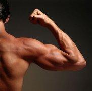 男性养生:常吃这五种食物让你更加男人